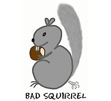 Bad Squirrel Photographic Print