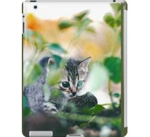 "Chat - Cat  "" Zazou "" 12 (c)(t) ) by Olao-Olavia / Okaio Créations 300mm  f.2.8 canon eos 5  1989 iPad Case/Skin"