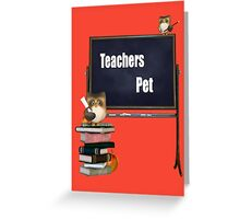 Teachers Pet  Greeting Card