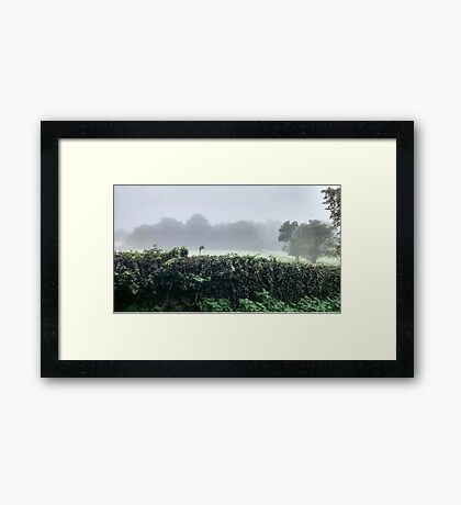 Misty Green Scene Framed Print