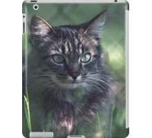 "Chat - Cat "" Tchink boom"" 02 (c)(t) ) by Olao-Olavia / Okaio Créations 300mm f.2.8 canon eos 5 1989  iPad Case/Skin"