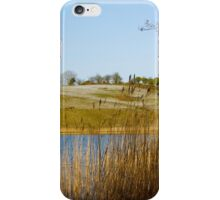 Frosty Day at Town Lake iPhone Case/Skin