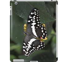 Citrus Swallowtail iPad Case/Skin