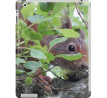 Shy Red Squirrel iPad Case/Skin