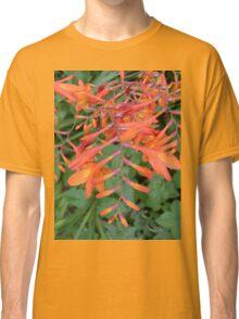 Orange Cascade Classic T-Shirt