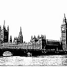 Houses of Parliament, London, UK by Douglas E.  Welch
