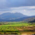 Across the Valley. by Karen  Betts