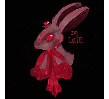 Late Red Rabbit Photographic Print