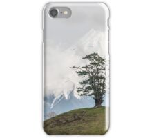 Taranaki iPhone Case/Skin