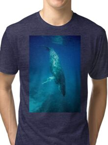 Humpback Whale Tri-blend T-Shirt