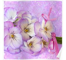 Ribboned Pansies  Poster