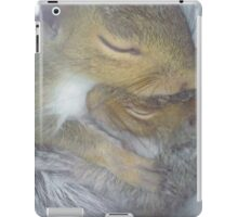 Cuddling Fur-Babies (Squirrels) iPad Case/Skin