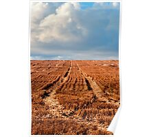 Outback agricultural and farming field Poster