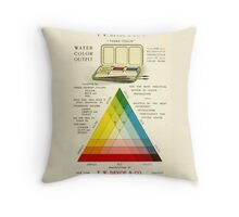 Gorgeous early 20th c. color instruction image Throw Pillow