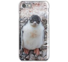 "Gentoo Penguin Chick ~ ""My life's goal....to grow into my feet!"" iPhone Case/Skin"