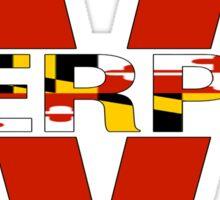 University of Maryland - Terps Split Sticker