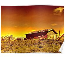 Till The Cows Come Home Poster