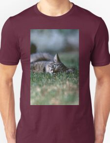 """Chat - Cat """" Tchink boom"""" 03 (c)(t) ) by Olao-Olavia / Okaio Créations 300mm f.2.8 canon eos 5 1989  T-Shirt"""