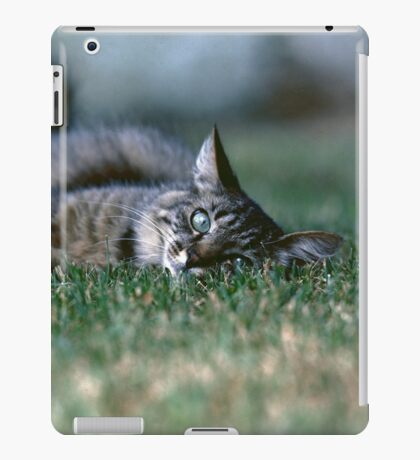 """Chat - Cat """" Tchink boom"""" 03 (c)(t) ) by Olao-Olavia / Okaio Créations 300mm f.2.8 canon eos 5 1989  iPad Case/Skin"""