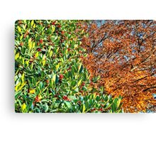 Between Autumn and Winter... Canvas Print