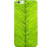 Macro of green leaf iPhone Case/Skin