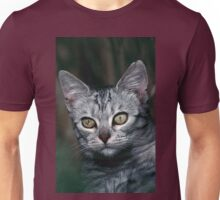 """Chat - Cat """" Peluche """" 01 (c)(h) ) by Olao-Olavia / Okaio Créations 300mm f.2.8 canon eos 5 1989  Unisex T-Shirt"""
