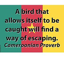 A Bird That Allows Itself - Cameroonian Proverb Photographic Print