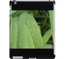 Dew Drops on Grass iPad Case/Skin