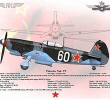 Yakovlev Yak-9T by A. Hermann