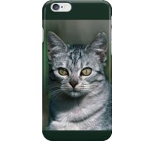 """Chat - Cat """" Peluche """" 02 (c)(h) ) by Olao-Olavia / Okaio Créations 300mm f.2.8 canon eos 5 1989  iPhone Case/Skin"""