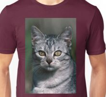 """Chat - Cat """" Peluche """" 02 (c)(h) ) by Olao-Olavia / Okaio Créations 300mm f.2.8 canon eos 5 1989  Unisex T-Shirt"""