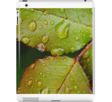 Rain drops on Blackthorn iPad Case/Skin