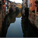 Rio Canal in Mantua, Italy by Igor Pozdnyakov