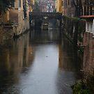 Ponticello over Rio Canal in Mantua, Italy by Igor Pozdnyakov
