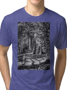 A walk in the woods B&W Tri-blend T-Shirt