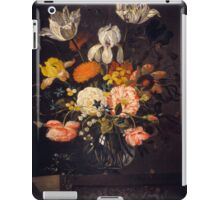 30 iPad Case/Skin
