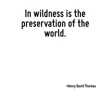 In wildness is the preservation of the world. by TerrificPenguin