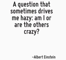 A question that sometimes drives me hazy: am I or are the others crazy? Baby Tee
