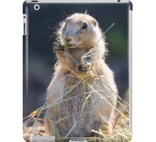 Prarie Dog iPad Case/Skin