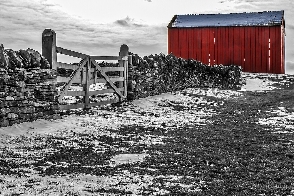 Shakertown Red Barn - SC by Mary Carol Story