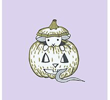 Peekaboo Halloween Mouse Photographic Print