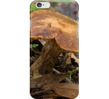 Cleft iPhone Case/Skin