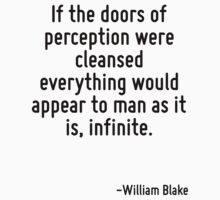 If the doors of perception were cleansed everything would appear to man as it is, infinite. by TerrificPenguin