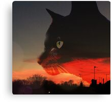 Black Cat at Sunset Canvas Print