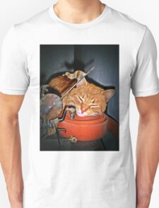 Quixote,Orange Cat,Orange Belt Unisex T-Shirt