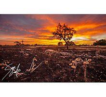 Fiery Sunset  Photographic Print