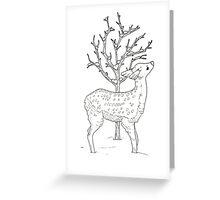 Winter Fawn Greeting Card