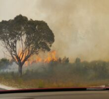 Bushfire, Boco Siding, Tasmania, Australia (2) Sticker