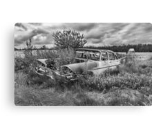 Prairie Weeds - Black and White Canvas Print