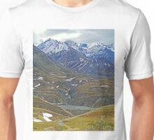 Mountain country, Denali National Park, Alaska, USA Unisex T-Shirt